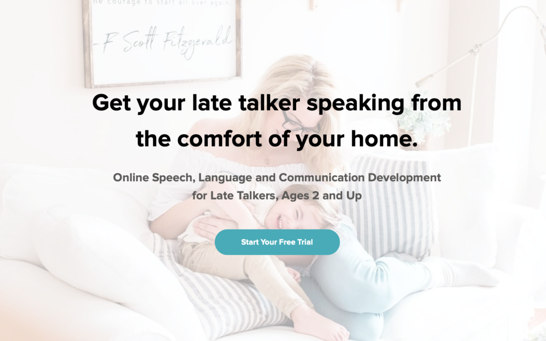 Valued Voices Online Courses for Late Talkers